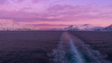 Noordelijke IJszee in paars