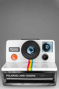 Polaroid 1000 van Marieke de Jong