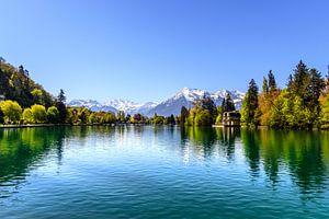 Schweizer Alpen van Bojan Radisavljevic