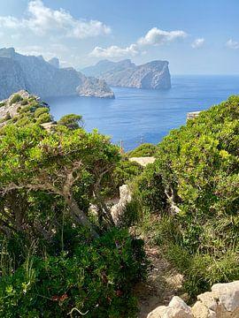 Mallorca - Cap de Formentor van Marek Bednarek