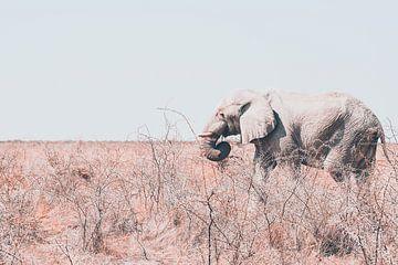 Eenzame olifant onderweg naar water von Ger&Wil van de Bovenkamp