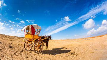 Pferd mit Kutsche in der Wüste von Günter Albers