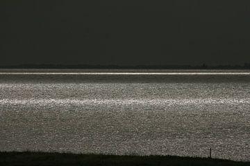 Verzilverde Waddenzee van Meindert van Dijk
