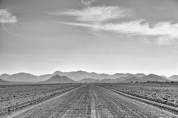 road to nowhere van Ed Dorrestein