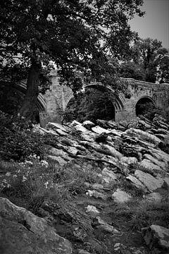Teufelsbrücke von Hannelore