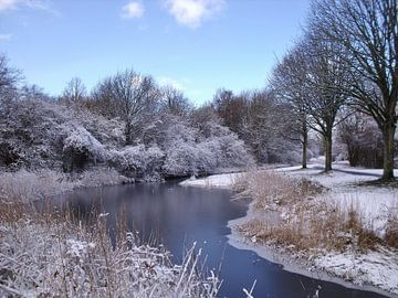 Helder winterlandschap von Pieter Korstanje