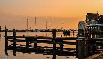 Port de Volendam avec un beau tigre sur