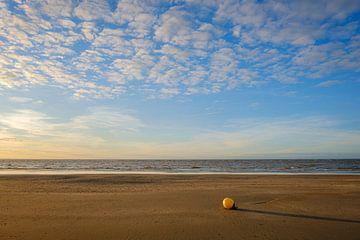 Boei op het strand van Johan Vanbockryck