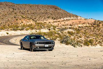 Dodge Challenger on U.S Route 66 - Oatman - Kingman van Martijn Bravenboer