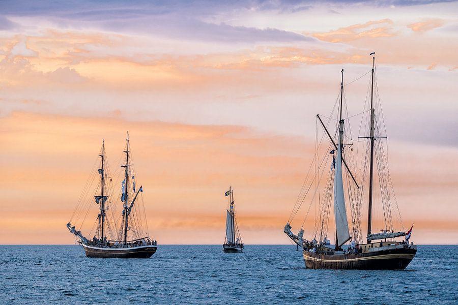 Sailing ships on the Hanse Sail