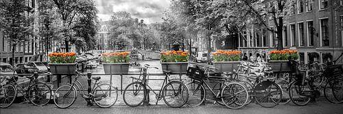 AMSTERDAM Herengracht | Panorama