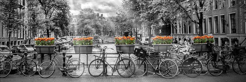AMSTERDAM Herengracht | Panorama von Melanie Viola