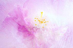 Frozen apple blossom van