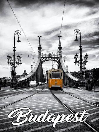 Budapest - Freiheitsbrücke mit historischer Straßenbahn von Carina Buchspies