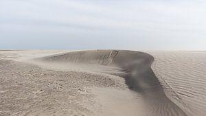 Sanddüne im Entstehen begriffen