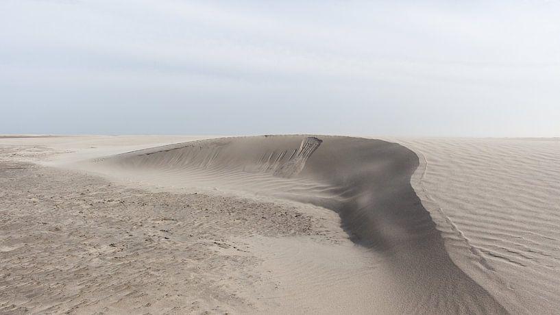 Sanddüne im Entstehen begriffen von Dick Doorduin