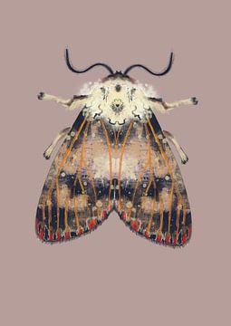 Motte mit roten Punkten auf farbigem Hintergrund von Angela Peters