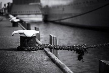 Eindelijk thuis (zwart-wit) van Rick Van der Poorten