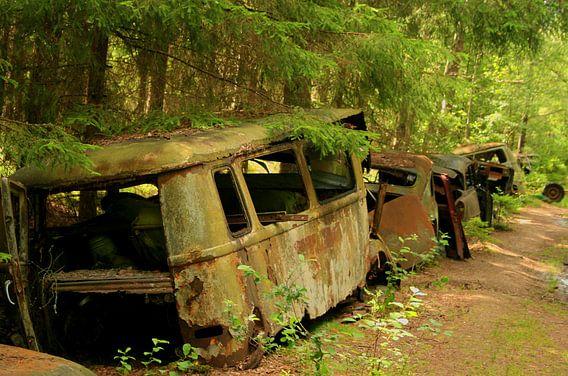 Autokerkhof in het bos