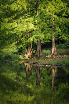 Big Feet reflecties van Joris Pannemans - Loris Photography