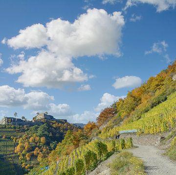 Rode wijn wandelroute in de Ahr vallei,Duitsland van Peter Eckert