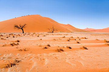 Landschaft Namibia, Afrika, Sossusvlie, Wüste, Farbe, Orange von Liesbeth Govers voor omdewest.com