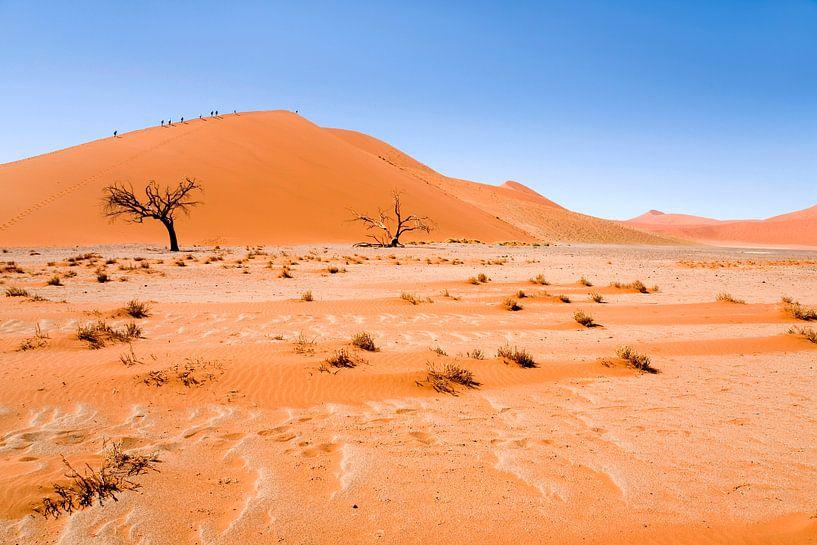 Landschap Namibie, Afrika, Sossusvlie, Woestijn, Kleur, Oranje van Liesbeth Govers voor omdewest.com