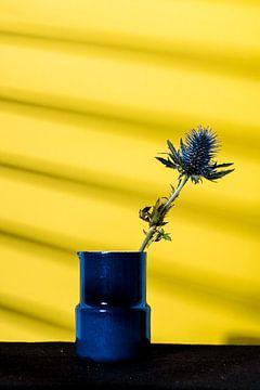 Blauwe distel in  vaasje von whatido intheshadow