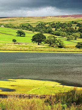 Gouthwaite Reservoir in Nidderdale van Gisela Scheffbuch
