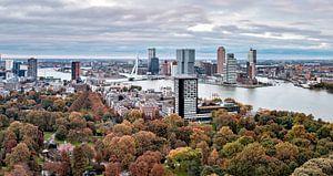 Autumn Rotterdam Euromast van