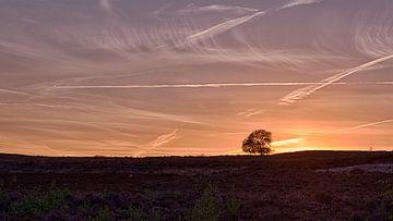 Zonsondergang Archemerberg - Gelderland van Arthur de Rijke