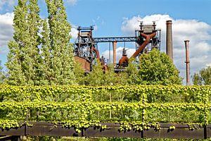 Groen landschapspark Duisburg-Nord (7-47443) van Franz Walter