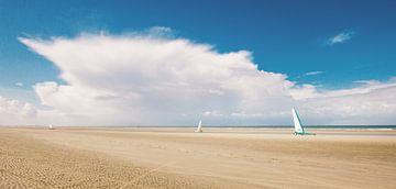 Wind in de zeilen van Thierry Matsaert
