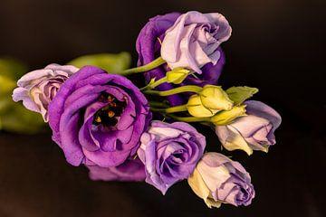 Lila Blumen von Adelheid Smitt
