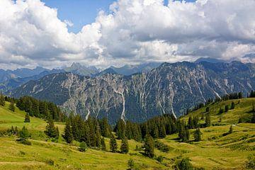 Panorama Uitzicht van Alpe Schlappold naar de Allgäu Hoofdrug van Gisela Scheffbuch