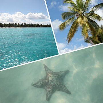 Isla Saona Caraïbisch gebied fotocollage van Christine aka stine1