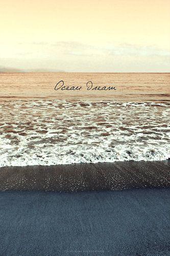 Ocean Dream III van