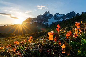 """Berglandschap """"Zonsondergang met rode rozen"""" van Coen Weesjes"""