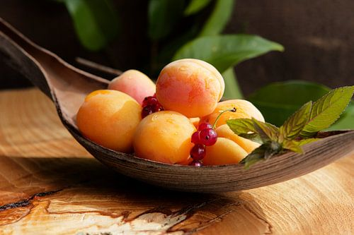 Verse abrikozen stilleven