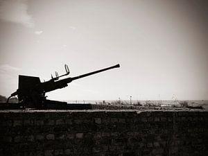 """Atlantikwall 4 cm Flak 28 """"Bofors""""  van"""