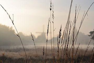 Blick auf die Mühle von Marieke Peters-Brugmans