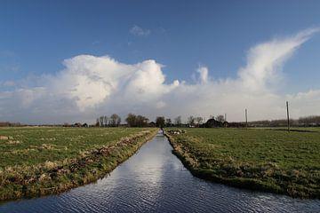 Wolken reflecteren in een sloot van de Zuidplaspolder in Moordrecht