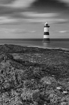 Leuchtturm Anglesey, Wales von Carole Winchester
