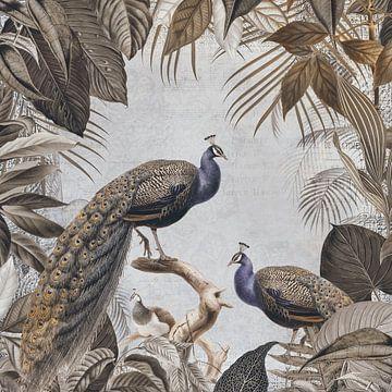 Pauwen Paradijs van Andrea Haase