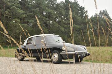 Zwarte Citroën DS 1970 von Theo Joosten