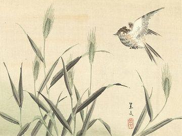 Vogel vliegend bij grassen van Matsumura Keibun