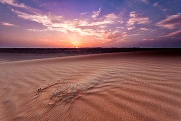 Woestijn van Tilo Grellmann | Photography