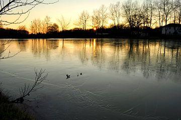 Reflecties op ijs van Corinne Welp
