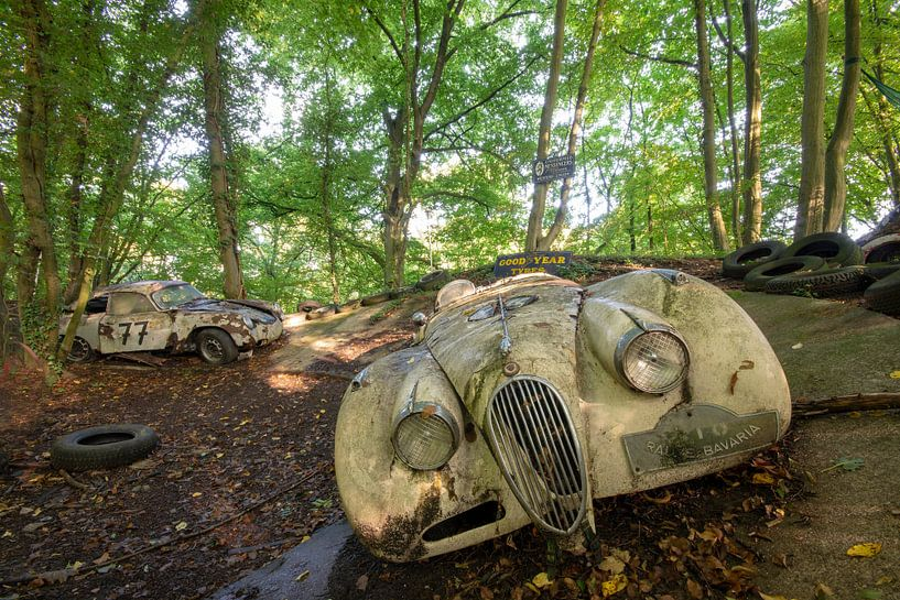 Abandoned in the woods van Henny Reumerman