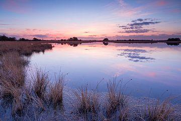 Strabrechtse Heide 199 sur Desh amer
